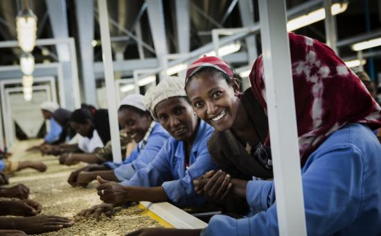 Coffe producers in Ethiopia